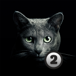 Download Find a cat 2. Free! 1.5 APK For Android