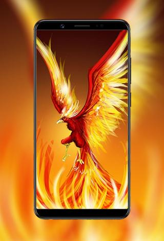 Download Phoenix Wallpapers 1.0 APK For Android