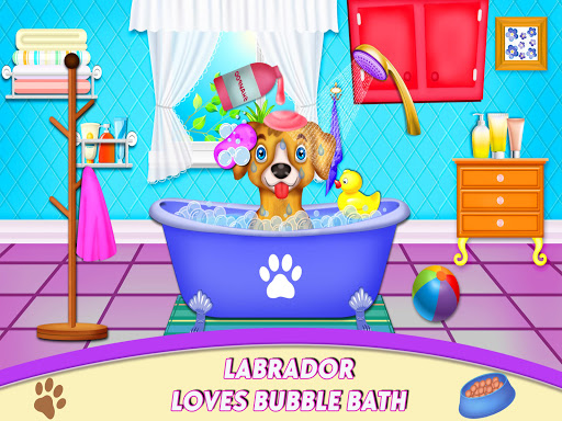 Download Labrador Pet Daycare Nanny House 0.1 APK For Android
