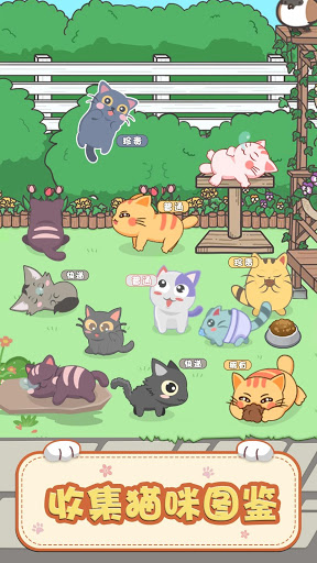 Download 奇妙猫之家 1.0.3 APK For Android