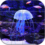Download Sea world Puzzle 1.14 APK For Android