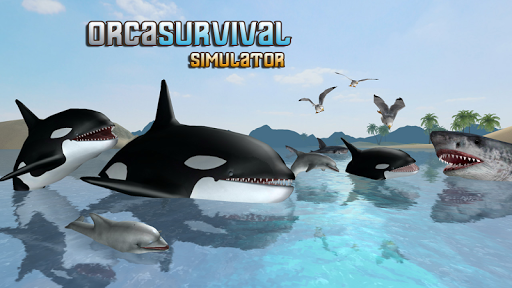 Download Orca Survival Simulator 1.1 APK For Android