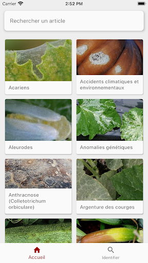 Download DiagnoPlant Courgette 10.0.2 APK For Android
