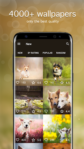 Download Dog Wallpapaers & Puppy Backgrounds 5.0.6 APK For Android