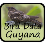 Download Bird Data - Guyana Bird Data - Guyana 1082 APK For Android