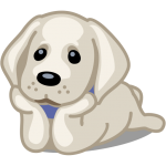 Download Pets Adoption: Adopt Dog, Cat or Post for Adoption 1.47 APK For Android