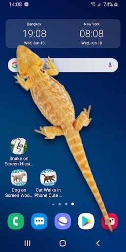 Download Lizard in phone funny joke - iLizard 1.0 APK For Android