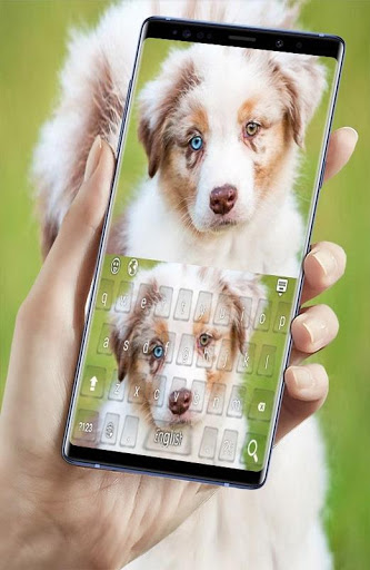Download shepherd dog keyboard 2.7 APK For Android