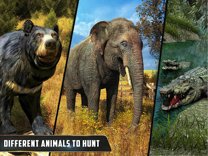 Download Wild Animal Hunting : Jungle Sniper FPS Shooting 1.11 Apk for android