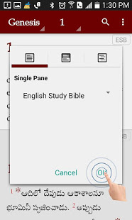 Download Study Bibles (Multiple Languages) 18.1 Apk for android