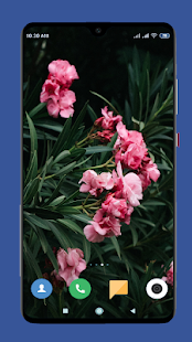 Download Beautiful Spring Wallpaper 4K 1.1 Apk for android