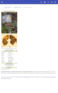 Download Butterflies 80.80.20 Apk for android