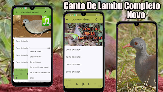 Download Canto De Lambu Completo 2020 6.2.3 Apk for android