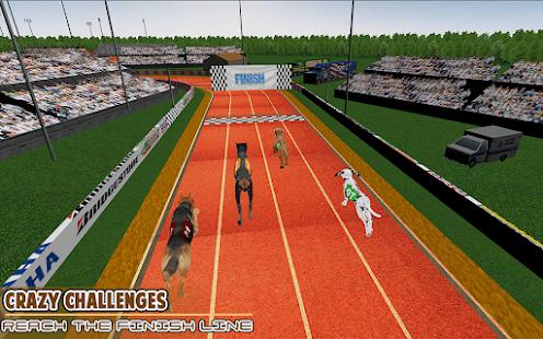 Download Dog Racing - Dog race Simulator - Pet Racing game 1.3 Apk for android