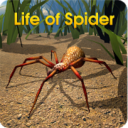 Download Life of Spider 1.2 Apk for android